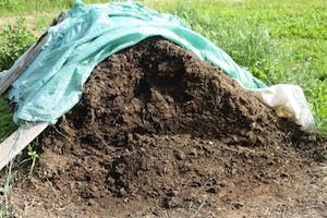 pila_compost