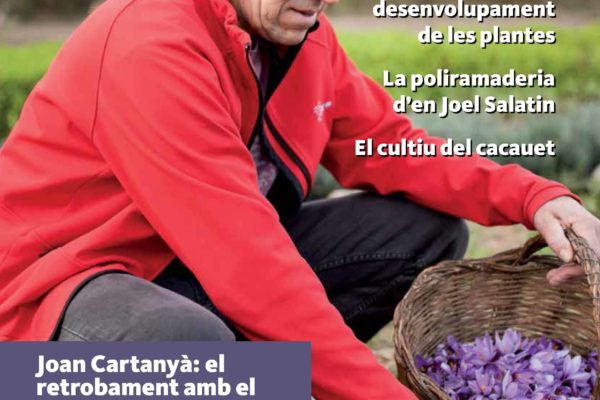 portada_54