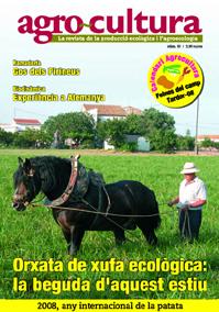 portada_31