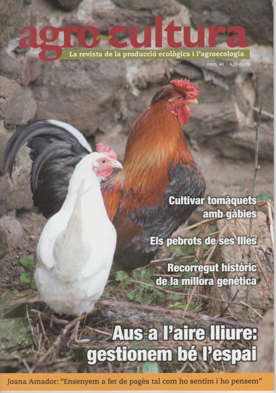 portada_40