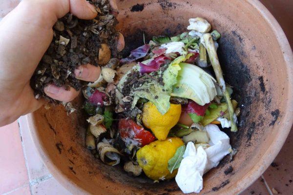compost_terrat_4_DSC00837_750x500