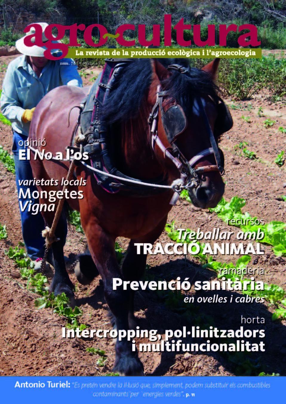portada_76